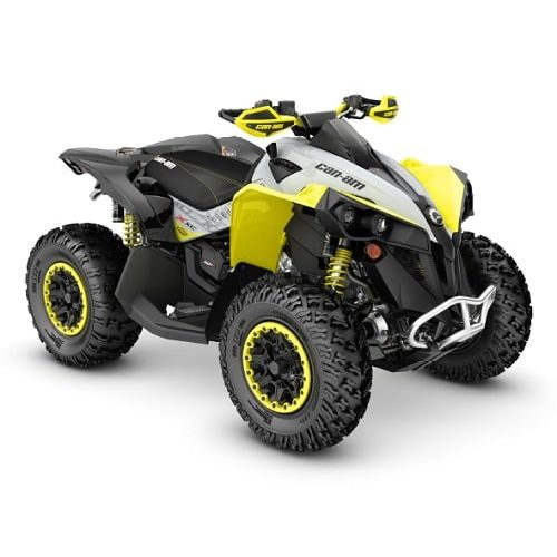 Can-Am Renegade X xc 650 '19